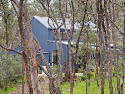 Castlemaine Hideaway in the Trees ... literally