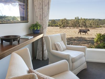 Reading room overlooking open paddocks