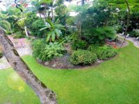 View of the garden from the treetops
