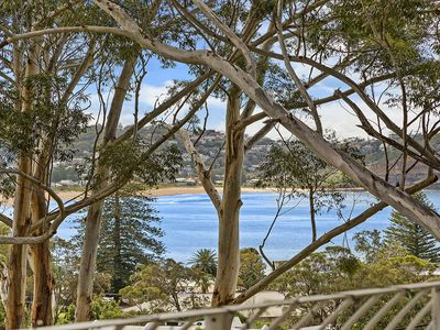 Perched among the trees with amazing views of Avoca Beach