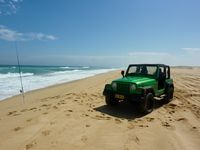 Stockton beach - 4WD access - great fishing and swimming