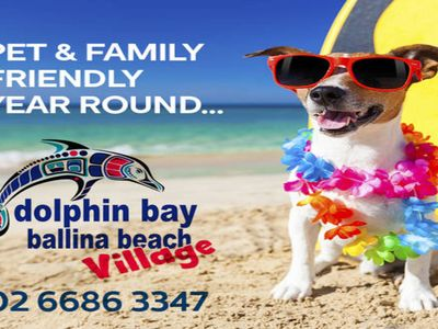 Ballina Beach Village - pet and family friendly