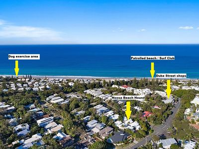 Noosa Beach Hound - location