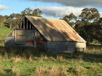Local iconic sheds
