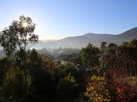 Morning view from back deck