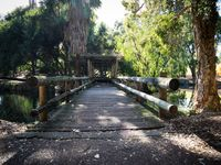 So many walking trails, the Swan River can be accessed two ways
