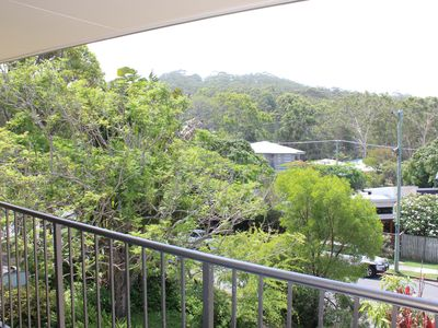 North facing leafy outlook from the front verandah......so relaxing