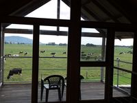 The view over the paddocks from the upstairs bedroom
