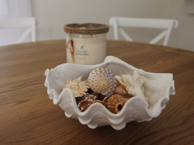 Seashells@Avoca