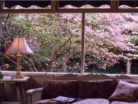 Sunroom in Spring
