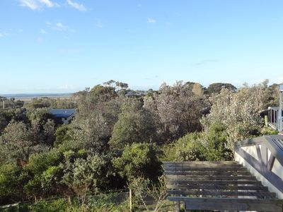 View from upper deck over the Banksias