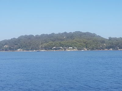 Dangar Island, view from the ferry.