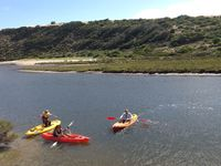 Middle River is great for kayaking (BYO kayak).
